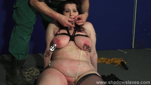 BDSM in company with BBW